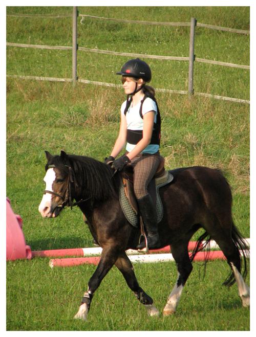 Internes  Hof-Turnier  des Vereins der Pony- und Pferdesportfreunde Weidenhof e.V.
