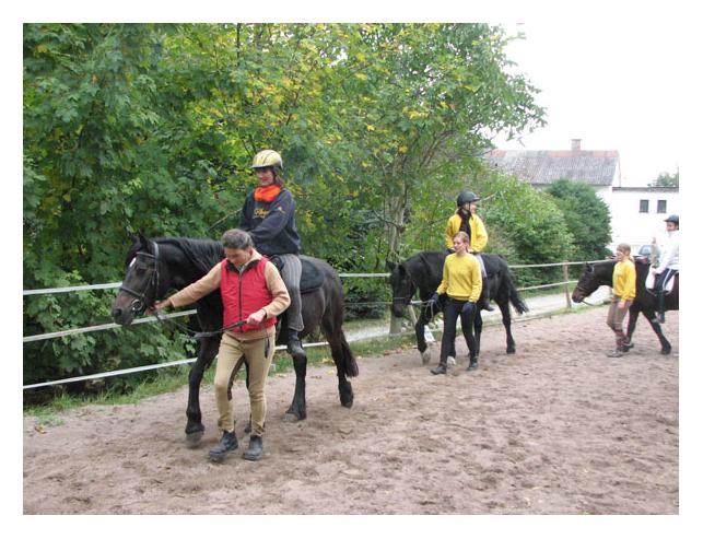Sport pro Gesundheit bei den  Ponysportfreunden in Beselich Schupbach
